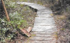 East Head Reservoir boardwalk 2